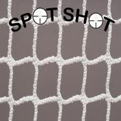 Spot Shot: Hidden Net