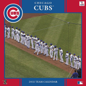 Turner Perfect Timing 2015 Chicago Cubs Team Wall Calendar, 30cm x 30cm