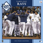 Turner Perfect Timing 2015 Tampa Bay Rays Team Wall Calendar, 30cm x 30cm