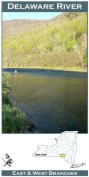 Delaware River, East and West Branches, 11x17 Fly Fishing Map