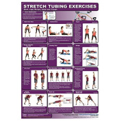 Legs, Back, Arms, Chest Resistance Tubing Poster
