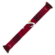 NBA Miami Heat 2014 Big Logo Scarf