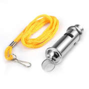 Metal Whistle,Alohha Police Bobby Style Security Metal Blowing Whistle for Outdoor Sports Training Race Coaches Referee with Neck Chain