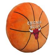 The Northwest Company NBA Chicago Bulls 3D Sports Pillow
