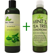 Dandruff Shampoo and Conditioner with Tea Tree Oil - Argan Oil Hair Growth Therapy - Lice Treatment for Kids - Hair Loss Products for Men Hair Loss Prevention for Women - With Lavender, Aloe & Menthol