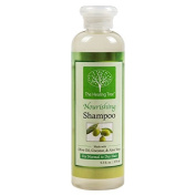 Coconut Shampoo - Nourishing Wash For Normal To Dry Hair - By The Healing Tree