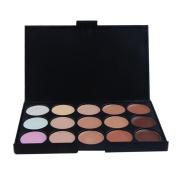 Toraway Pro 15 Colours Makeup Concealer Contour Palette +1 PC Makeup Brush