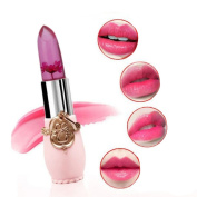 Waterproof Long Lasting Moisturise Lipstick Lip Gloss