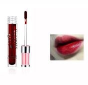 New Lipstick!Elevin(TM)By Nanda Fashion Women Ladies Moisturising Waterproof Long Lasting lip gloss liquid Lipstick