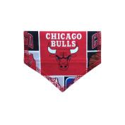 Chicago Bulls Cat Bandana