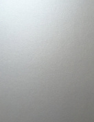 Silver Pearlescent Metallic Shimmer Cardstock from Cardstock Warehouse 22cm x 28cm - 105# Cover - 25 Sheets