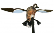 MOJO Outdoors Blue Wing Teal Motion Duck Decoy