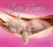 Cat Naps 2018 Daily Calendar