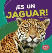 Es Un Jaguar! (It's a Jaguar!) (Bumba Books en Espanol Animales de la Selva Tropical  [Spanish]