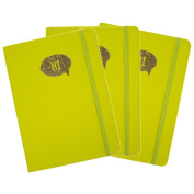 Markings by C.R. Gibson 3 Pack Lined Blank Writing Journals With Pockets Neon Leatherette Cover
