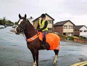 GEE TAC HORSE RUG WATERPROOF HI VIZ VIS RIDE ON EXERCISE SHEET WRAP ROUND ALL SIZES