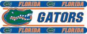 NCAA Florida Gators Wall Border Roll - College Football Self Stick