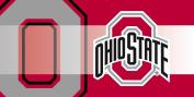 Ohio State Buckeyes Sassafras Decorative Floor Mat Insert