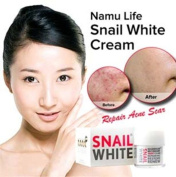 Snail White Snail Cream Regenerate Recovery Repairing Renew Facial Skin 50 Gramme