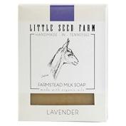 Little Seed Farm Lavender Soap 140ml
