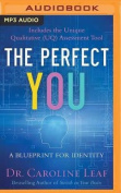 The Perfect You [Audio]