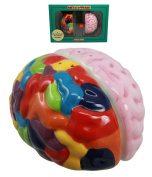 Atlantic Collectibles Right And Left Brains Magnetic Ceramic Salt Pepper Shakers Figurine Collectible Set