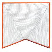 Coast Athletic Professional Lacrosse Goal
