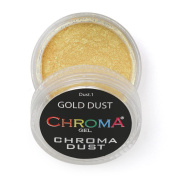 Chroma Dust No.1 Gold Dust Chrome Powder - Mirror Nails 2g