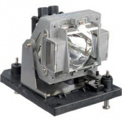 Alda PQ projector lamp POA-LMP117, 610-335-8406, 6103358406 for Sanyo PDG-DXT10L, PDG-DWT50L, PDG-DXT10, PDG-DWT50, PDG-DXT10JL(K), PDG-DWT50JL(K) Projectors, lamp with housing