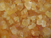 Water Kefir Grains Cristals