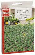 30 Potato Plants