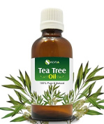 TEA TREE OIL 100% NATURAL PURE UNDILUTED UNCUT ESSENTIAL OIL 50ML