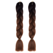 Abwin 60cm 2Piece Jumbo Braid Extension Synthetic Ombre Braiding Hair Ombre