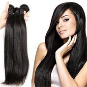BLISSHAIR 7A Straight Unprocessed Brazilian Plus Virgin Human Hair Wig Weave Bundle for Women Top Grade