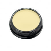 Mallofusa Single Colour Face Makeup Concealer Foundation Palette Moisturising 15ml