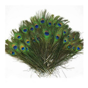 Herebuy8 50pcs Real Natural Peacock Tail Eyes Feathers Perfect for Wedding Party Arts And Crafts Home Decorations DIY