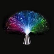 Multicolor Fibre Optic Lamp Light Holiday Wedding Centrepiece Fiberoptic LED New