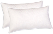 Sunflower DBP-22x32 Cotton Down Blended Hybrid Pillow, Set of 2, Queen