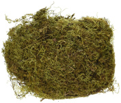 Factory Direct Craft Natural Preserved and Dried Sheet Moss for Floral Arranging, Crafting, and Embellishing