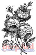Deep Red Rubber Cling Stamp English Roses Garden Botanical