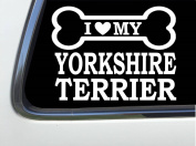 ThatLilCabin - I LOVE MY YORKSHIRE TERRIER 20cm AS648 car sticker decal