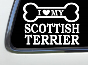 ThatLilCabin - I LOVE MY SCOTTISH TERRIER 20cm AS643 car sticker decal