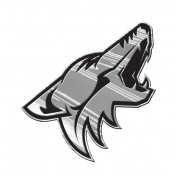 NHL Chrome Emblem