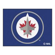 FANMATS NHL Winnipeg Jets Nylon Face All-Star Rug
