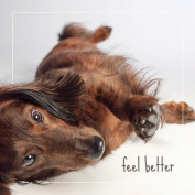 Get Well Greeting Card - FEEL BETTER