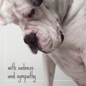 Sympathy Greeting Card - WITH SADNESS AND SYMPATHY