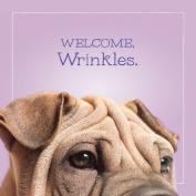 Shar Pei Birthday Greeting Card - WELCOME WRINKLES