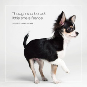 Chihuahua All-Occasion Greeting Card - SHE IS FIERCE