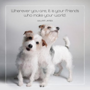 Friendship Greeting Card - FRIENDS MAKE YOUR WORLD