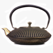 Japanese Cast Iron Pots Without Coating Handmade Gold Spout Boiling Water Tea 1.1L